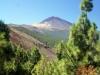 El Teide from the mountain ridge
